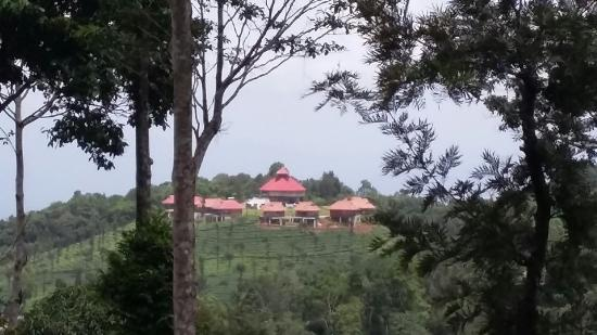 View from resort picture of wild planet jungle resort - Plante jungle ...