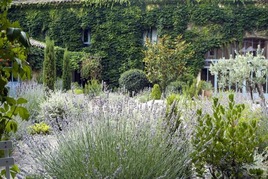 Le Mas des Oules : The central courtyard garden