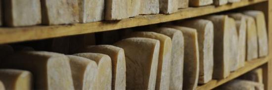 sacripante osteria : Toma di pecora brigasca