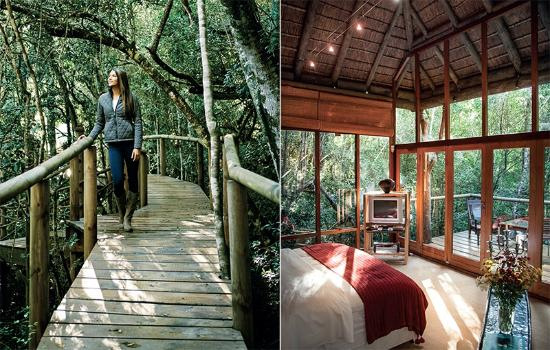 Forest Nature Spa: Accommodation