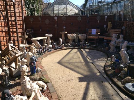 Glapwell Nurseries