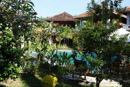 Hotel My Lovina: jardin de l hotel
