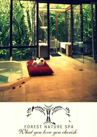 Forest Nature Spa: Spa set in the forest
