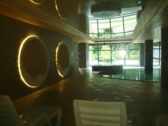 Hotel Villa Park Med & Spa: basen