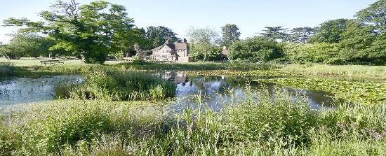 Martins Pond: Pond Picture