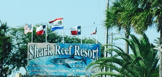 Shark Reef Resort: photo0.jpg