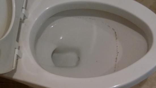 Stay At Inn: Same room, mold around toilet bowl