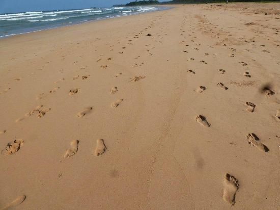 Empty Bentota beach