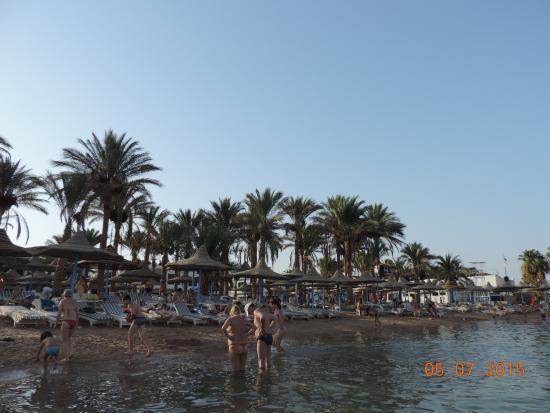 Marlin Inn Azur Resort: пляж