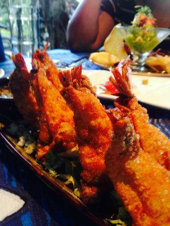 Mama's Fish House: shrimp won ton