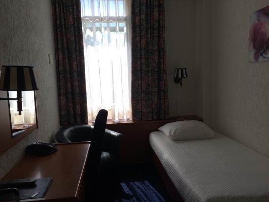 Owl Hotel: Single room