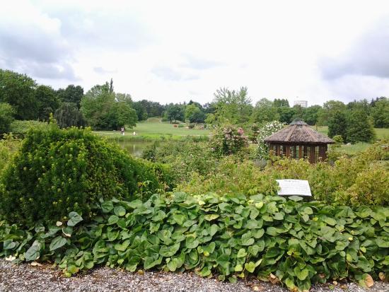 general view picture of loki schmidt garten botanical garden hamburg tripadvisor. Black Bedroom Furniture Sets. Home Design Ideas