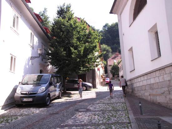 Lesar Hotel Angel: road to castle outside hotel