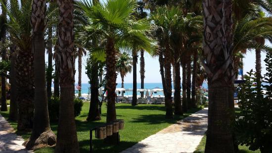 Meryan Hotel: Pool and garden.