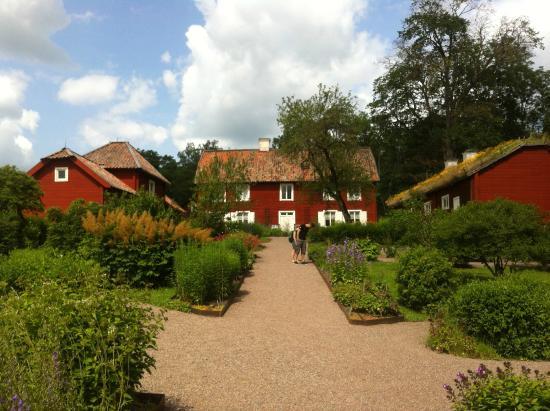 Linnés Hammarby: Het zomerhuis van Linnaeus