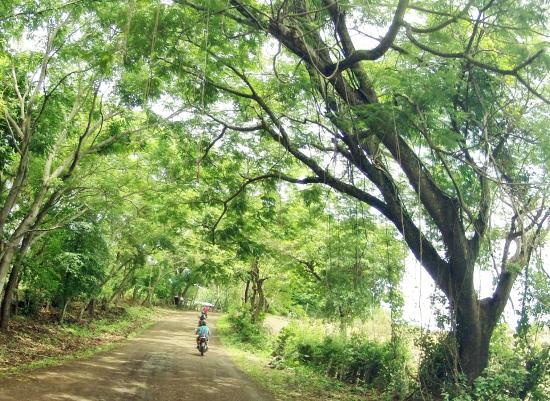 San Juan del Sur, Nicaragua: Ometepe Island Guided Tour