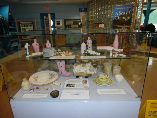 Bonne Bay Marine Station : Display of Artifacts