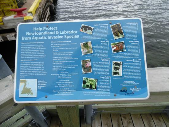 Bonne Bay Marine Station : Information Display