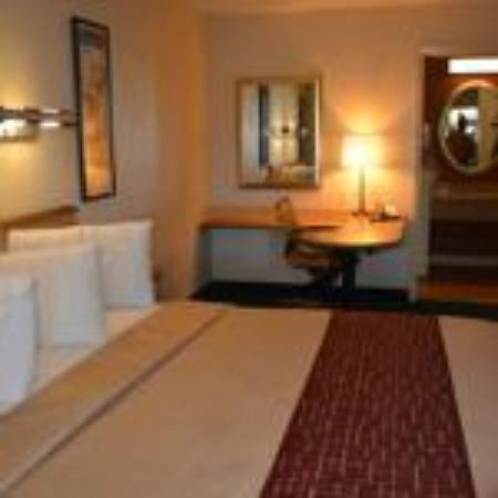 Red Roof Inn Rancho Cordova - Sacramento: Superior King Room