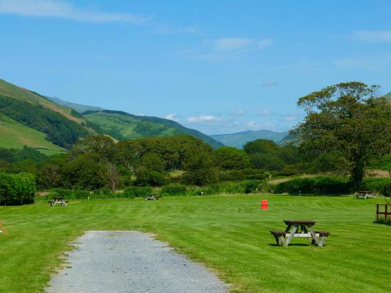 Tynllwyn Caravan and Camping Site: View of the pitches