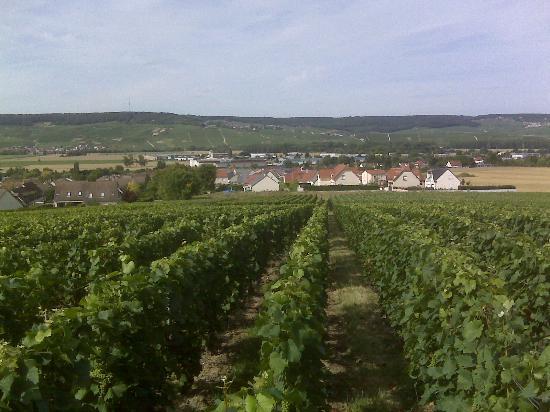 Champagne-Ardenne, France: Estrada