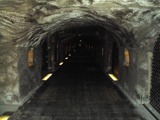 Champagne-Ardenne, France: Subterrâneo, que aroma?