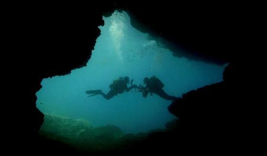 Dive Mallorca