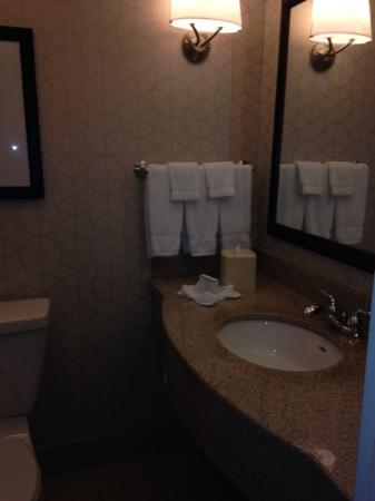 Hilton Garden Inn Rockford: Bathroom