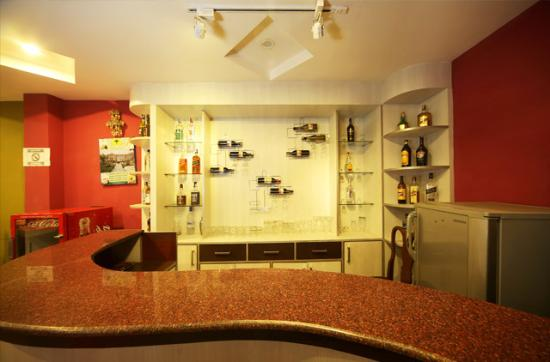 Hotel Pleasure Home Pvt.Ltd: Hotel Bar