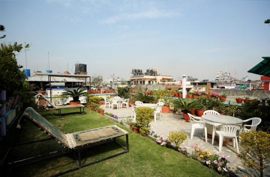 Hotel Pleasure Home Pvt.Ltd: Roof top