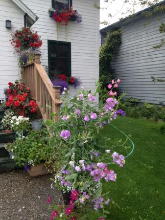 Oscar Gill House Bed and Breakfast: Summer Profusion