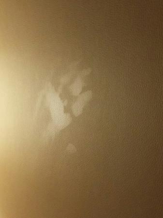 Extended Stay America - Peoria - North: Handprint on the headboard, gross!!