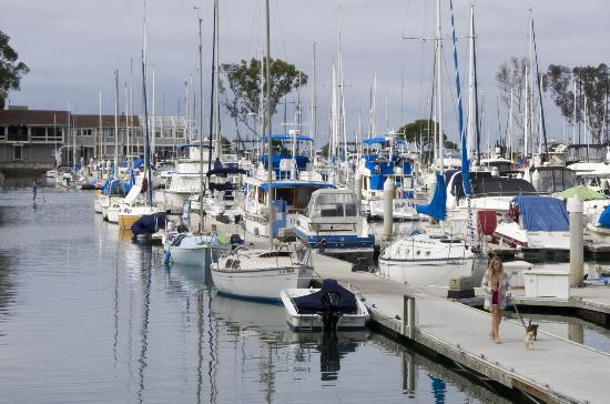 Dana Point, CA: Name a water sport or activity and you will find it here. Want to learn how to sail? Check. Safe