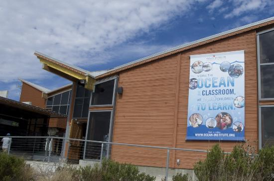 Dana Point, CA: The Ocean Institute brings local sea creatures to you with great exhibits and fun cruises.