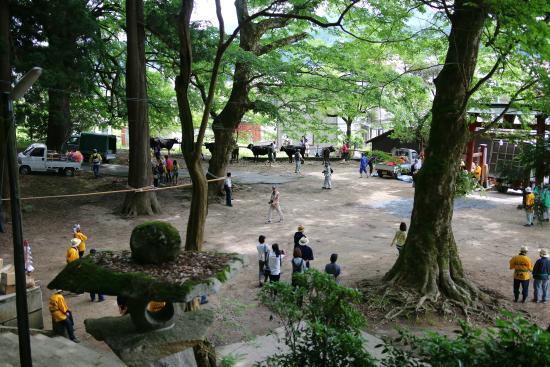 Mibu Shrine