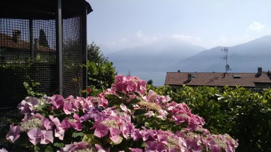 Hotel Adler : Lake view
