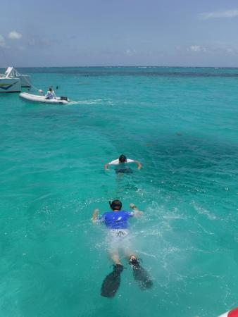 Baie de Simpson, Saint-Martin : How is THAT for snorkeling conditions:)