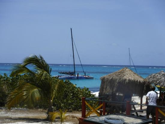 Simpson Bay, St. Martin/St. Maarten : Prickley Pear has a great spot for yummy lunch, Mahi Mahi was delicious!