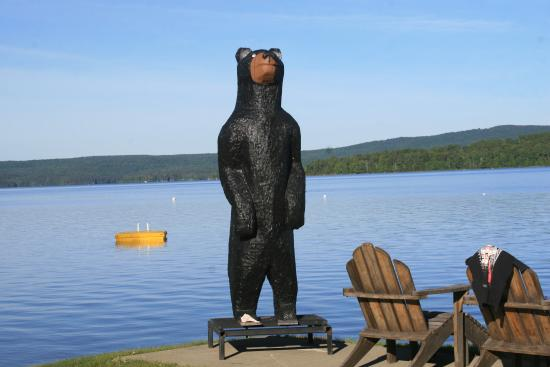 Oquossoc, ME: bear by lake