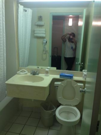 Sector Piscina Picture Of Seagull Hotel Miami Beach Tripadvisor