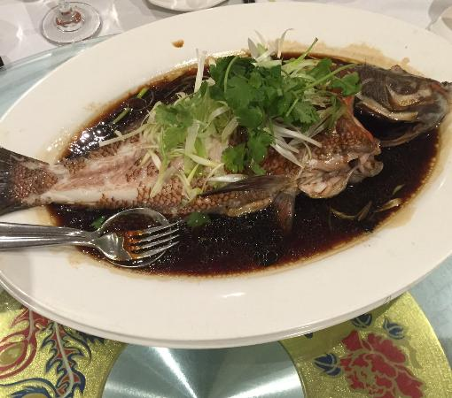 All People Chinese Restaurant: Steam fish