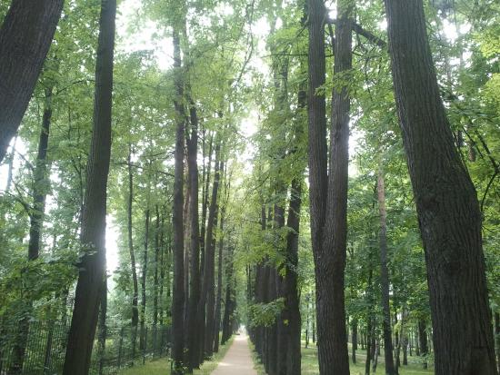Perlovskiy Park