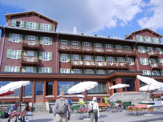 Hotel Bellevue des Alpes: 外観