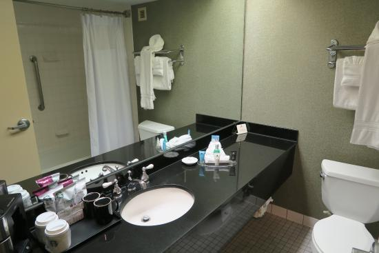 Crowne Plaza Auburn Hills : decent bathroom