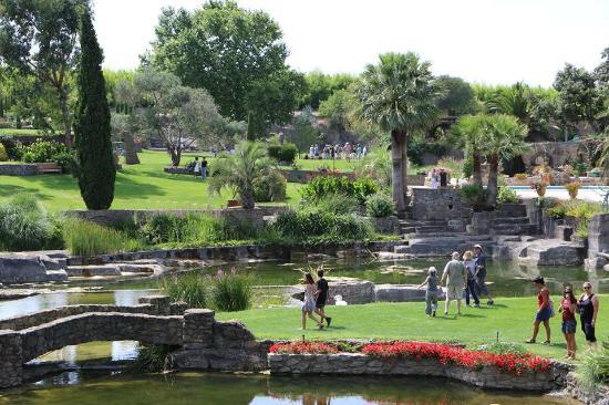 De jolis n nuphars photo de le jardin de saint adrien servian tripadvisor - Jardin de saint adrien ...