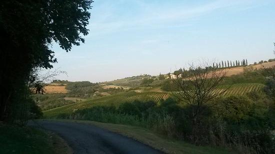 Montespertoli, Italien: Il panorama intorno