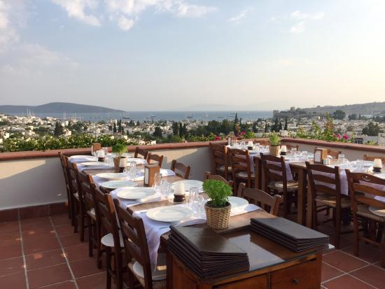 El Vino Restaurant: Terrace