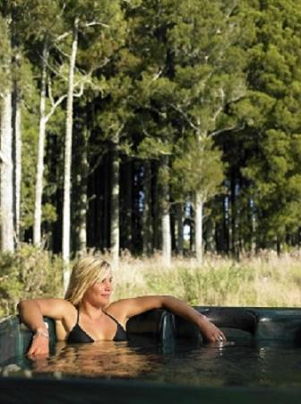 Hidden Valley Luxury Retreat: Hot spa pool available