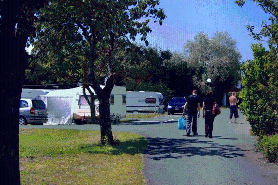 Camping Amazone