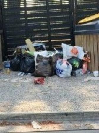 Parc Saint James Oasis Village : dépôt de poubelles en plein camping ! imaginez avec la chaleur les odeurs ! quel manque d'hygièn